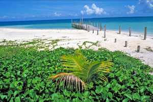a4.belize.country