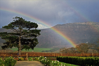 a4.southafrica.rainbow2.story