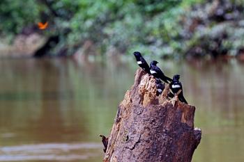 a2.climate.conservation.equador.story