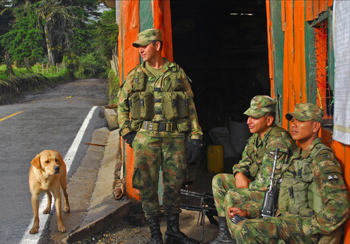 a5.colombia.farc.story
