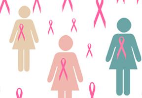 c1.breastcancer.spsec