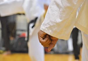 c2.karate.fist.spsec