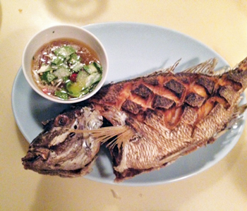 dining.little.serow.fish.story