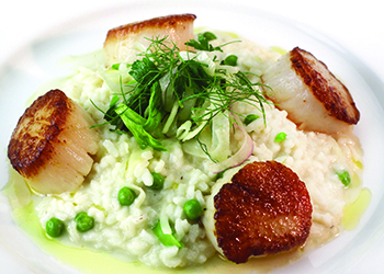 dining.ocean.prime.scallops.risotto.story