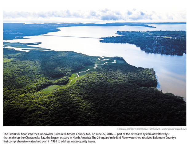 a7.waterways.bird.river.story