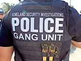 a2.immigration.gang.illegal.home